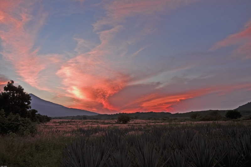 Sunset On Tequila, Jalisco