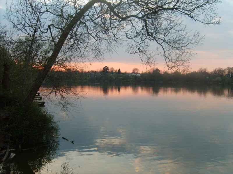 Sunset At Earlswood Lakes
