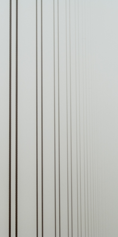 Cable Supports Of Golden Gate In Fog
