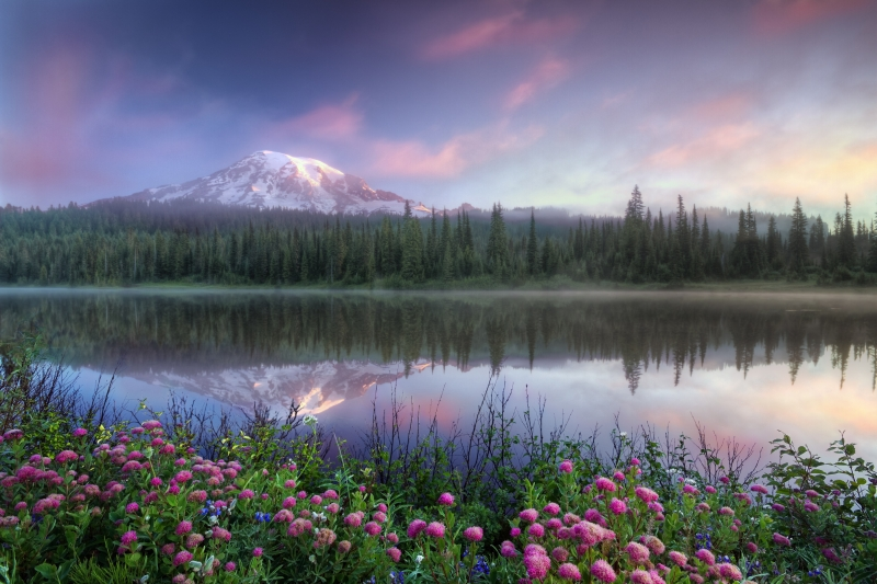 Mt. Rainier And Misty Lake