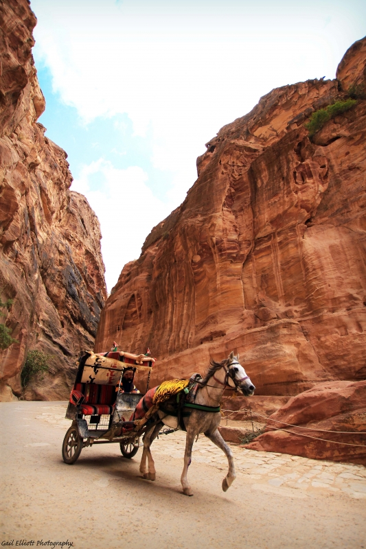 Petra's Siq By Horse & Carriage