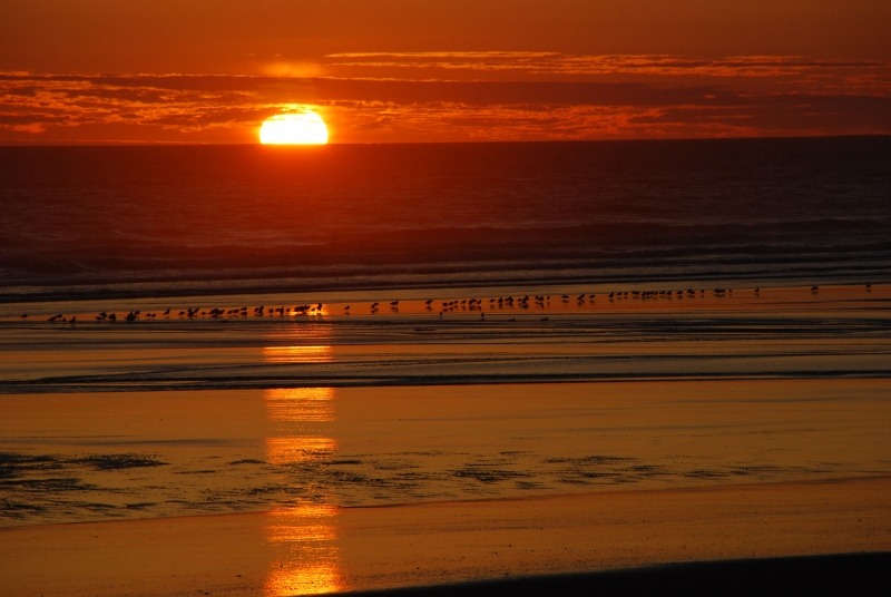 Sunset At Kalaloch