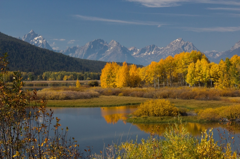 Fall Colors In Oxbow Bend