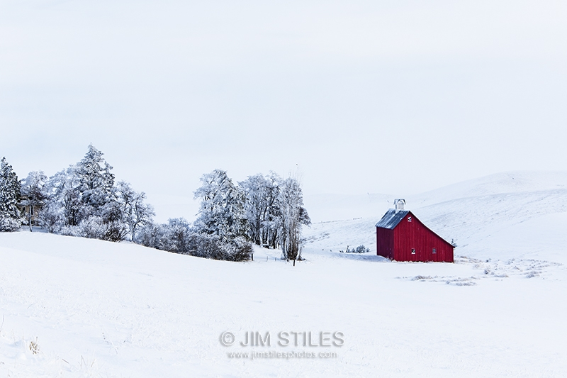 Winter In The Palouse