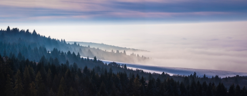 Fog Over The Blue Mountains