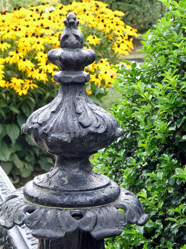 Fence Post And Flowers