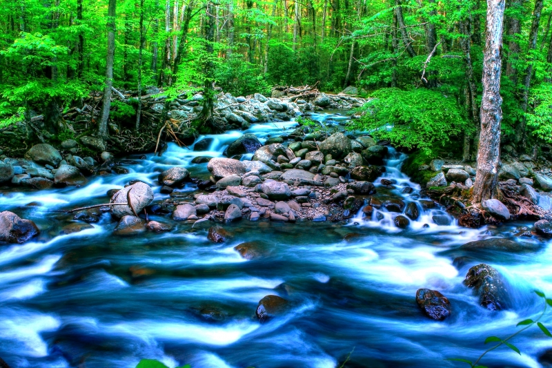 Smokey Mountains Mountain Stream