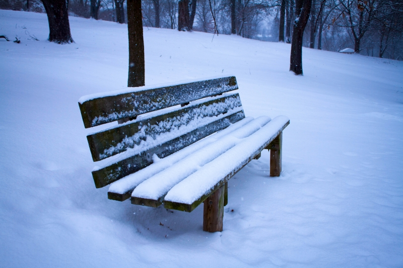 The Warm Bench