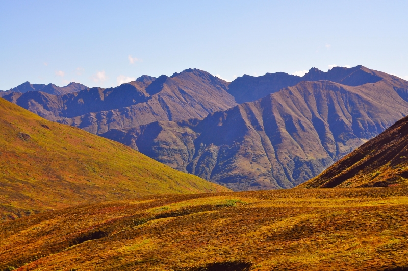 Fall Comes To The Talkeetna Mts.
