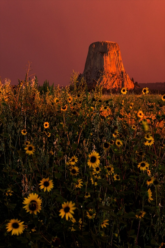 Stormy Sunrise, Devils Tower, Wyoming