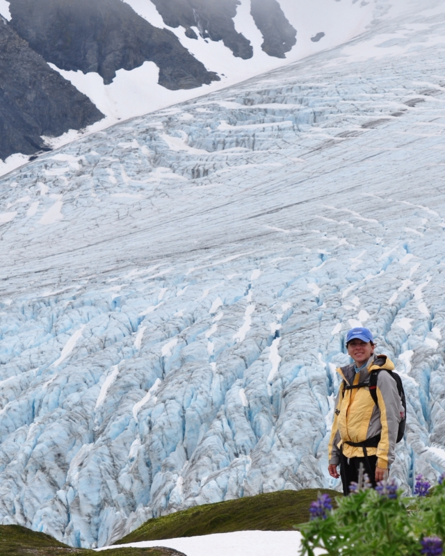 The Exit Glacier From The Harding Icefield Trail