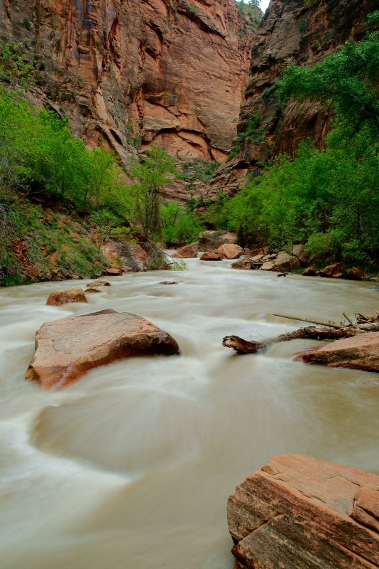 Lower Virgin River Narrows