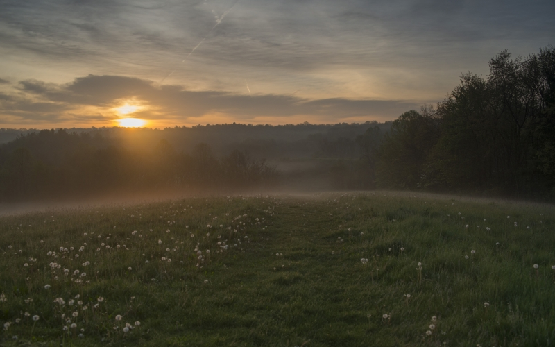 Sunrise Over A Misty Morning At Kendall Ledges – Cuyahoga Valley National Park