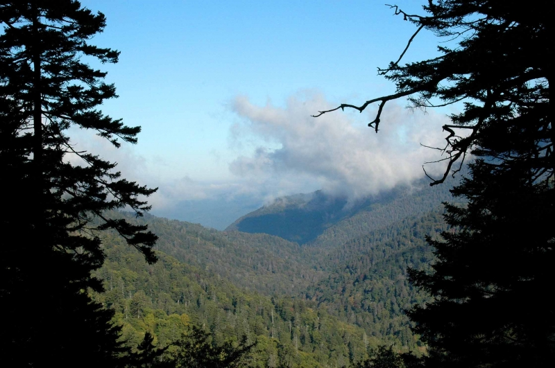 Smoky Mountains Framed