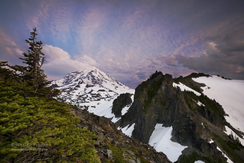 Mount Rainier From Knapsack Pass
