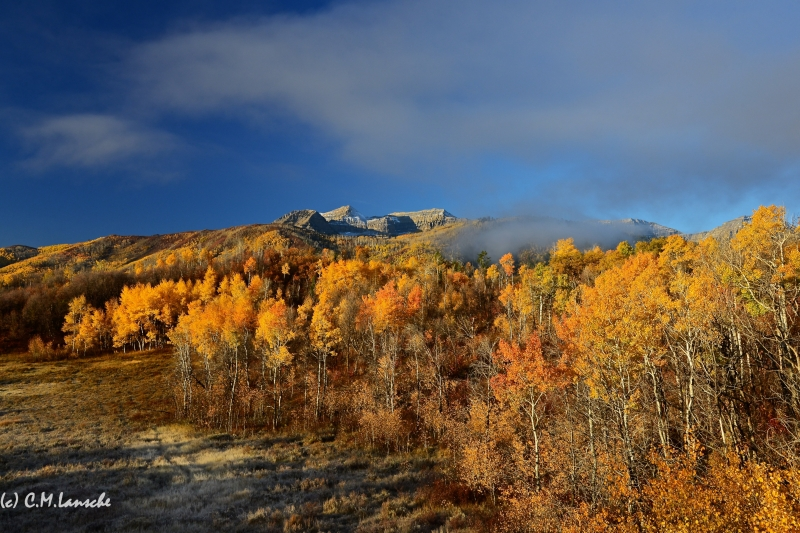 Wasatch Morning