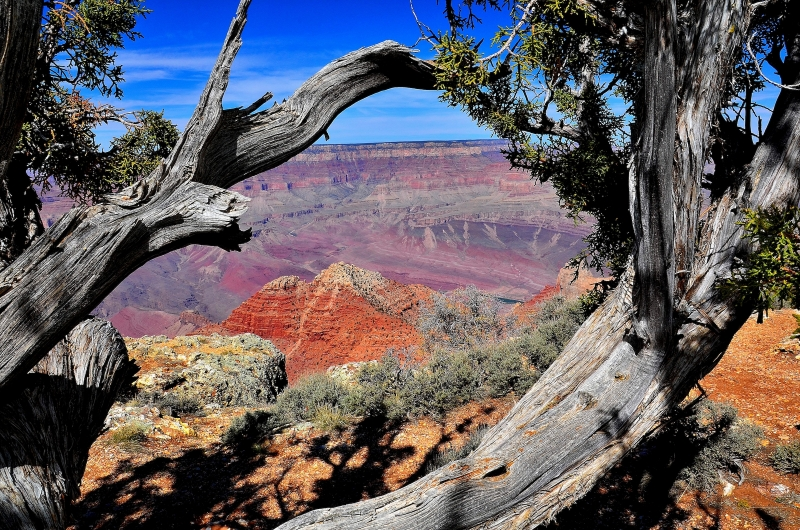 Grand Canyon – South Rim