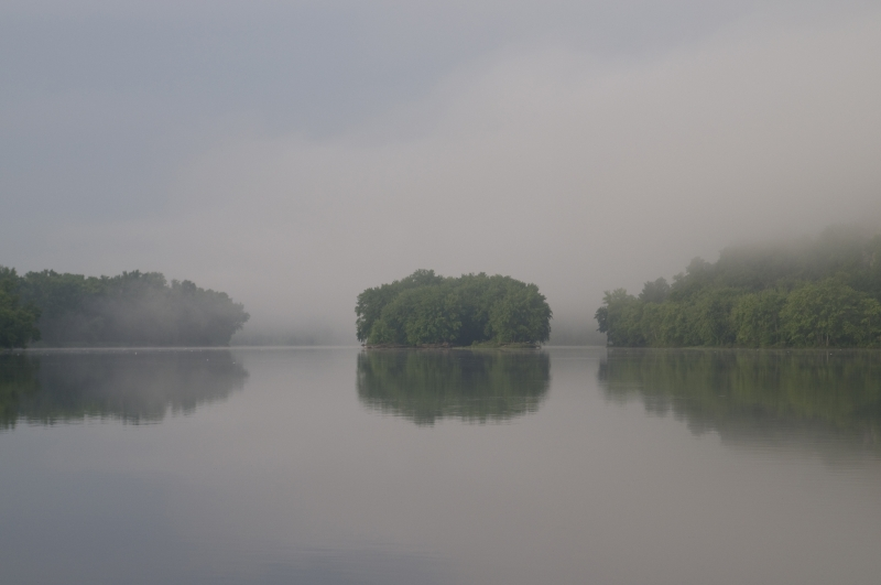 Foggy Morning On The St. Croix