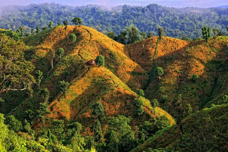 Mountain Bandarban
