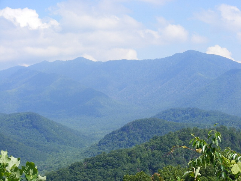 The Great Smoky Mountain
