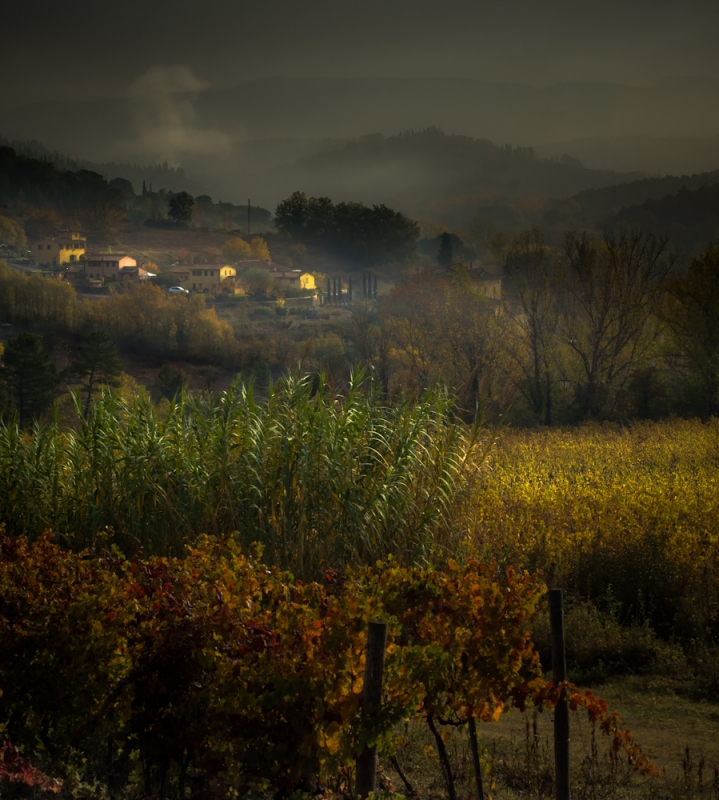 Fall In Tuscany