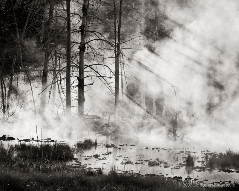 Yellowstone – Primordial Steam