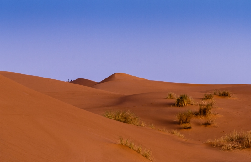 Moroccan Sahara Morning