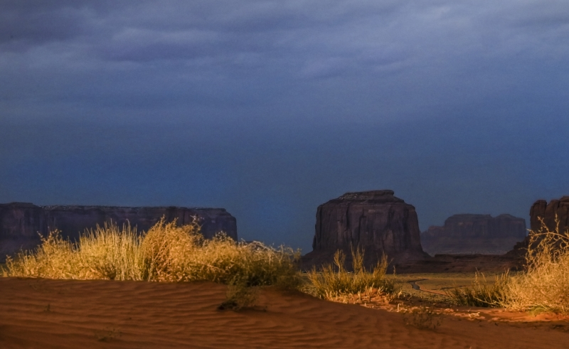 Grasses Of Monument Valley