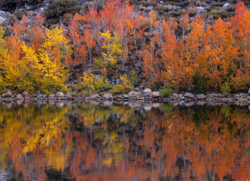 North Lake Reflections (eastern Sierra)