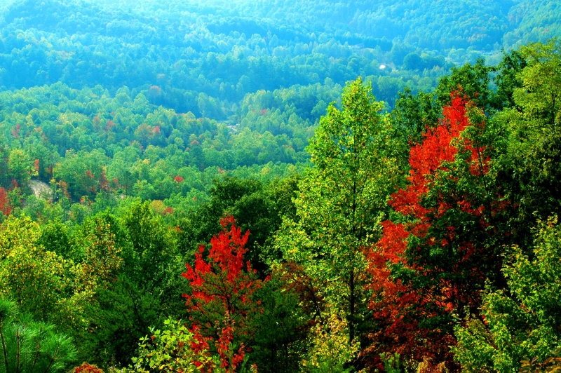 Foothills Parkway Colors