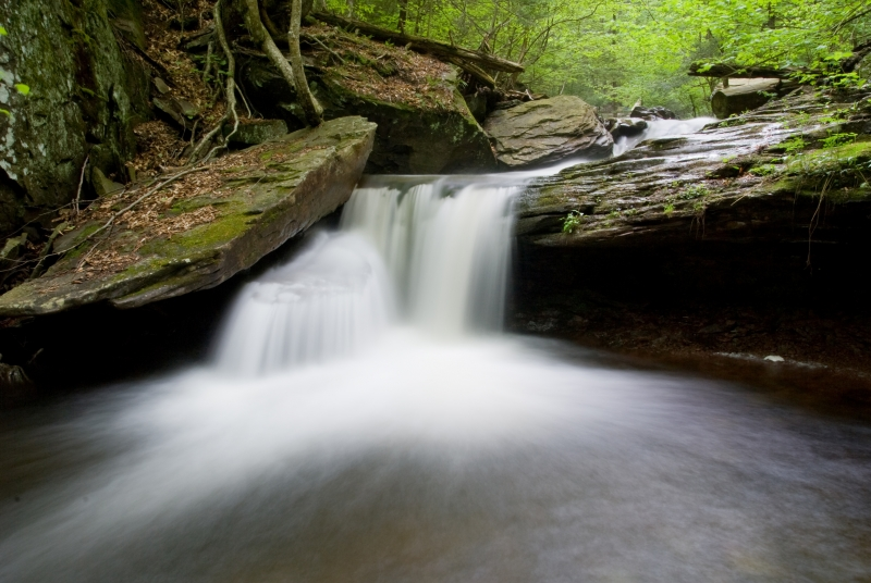 Waterfall At Ricketts Glen State Park