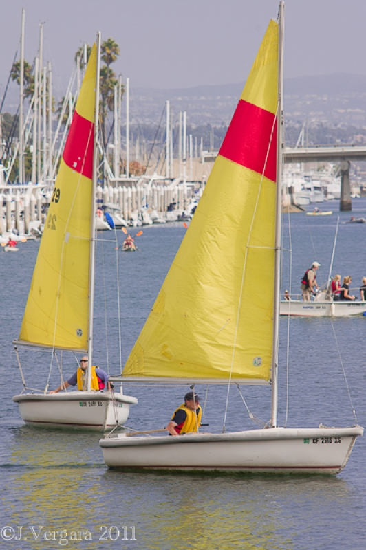 Sailing At Dana Point