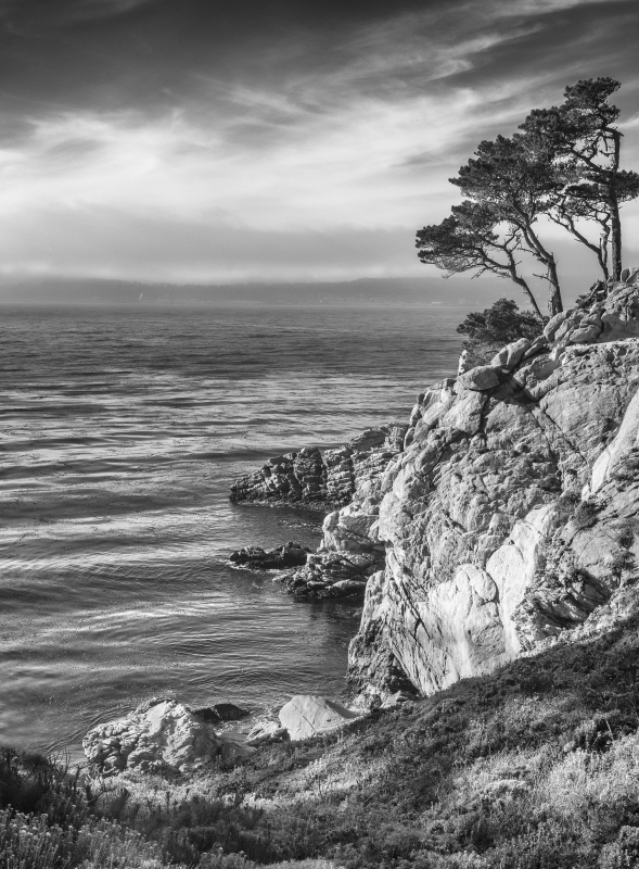 Late Afternoon Point Lobos