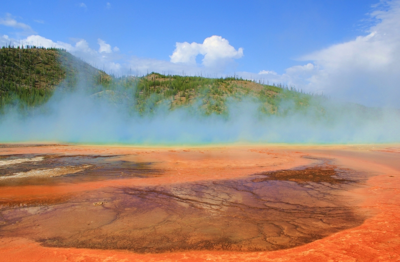 Geyser Of Color