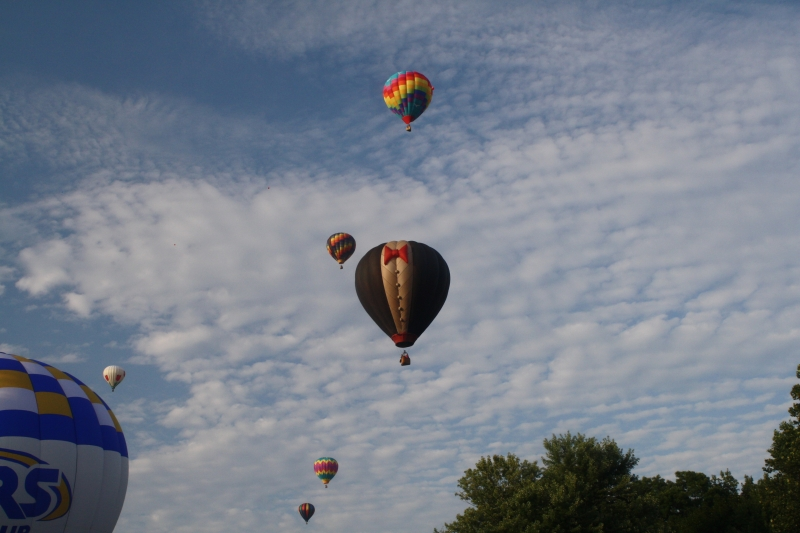 Otsiningo Park Balloon Rally