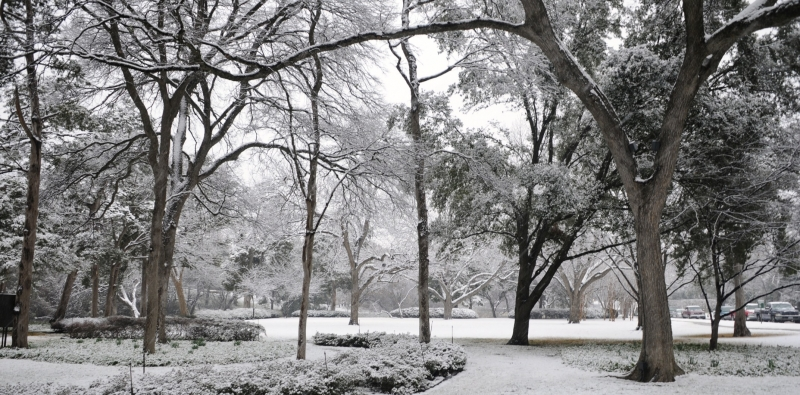 Snow In Dallas!