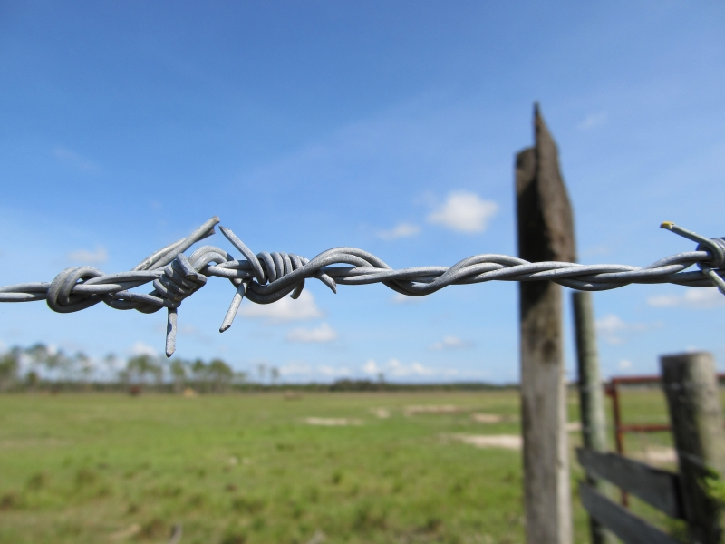 Barbed Wire And Wooden Sign3