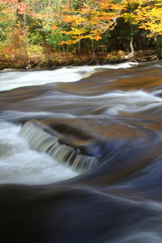 Oconaluftee River Flows