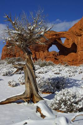 'winter Comes To Arches'