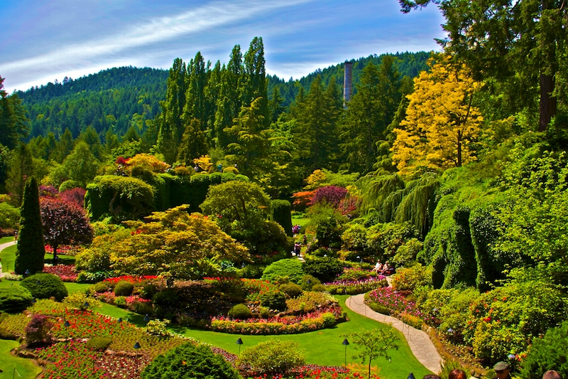 Buchart Gardens View