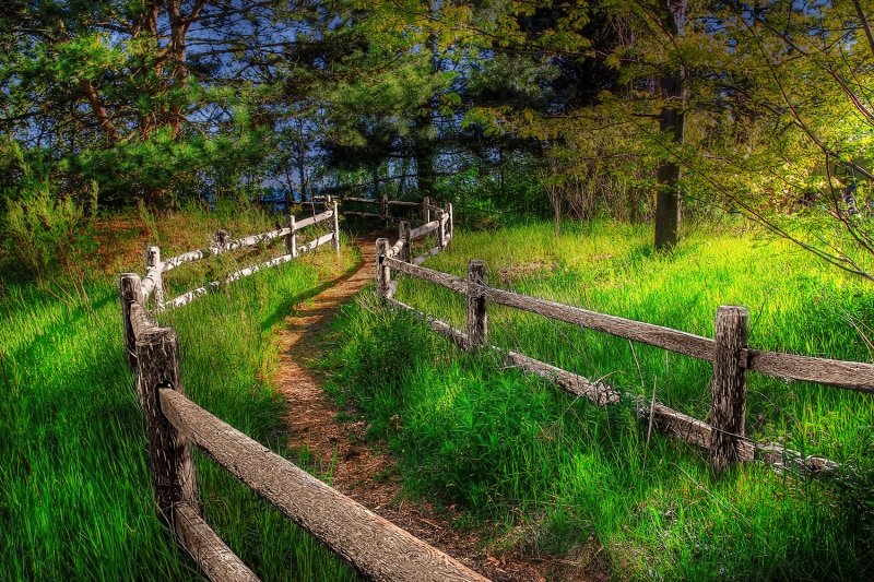 """""""finding Your Way Back To Nature"""""""