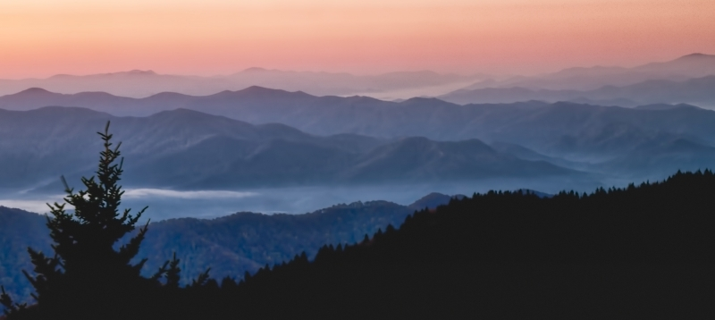 Clingman's Dome Layers In The Mist