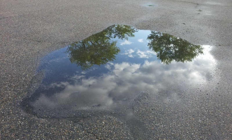 Puddle Pictures