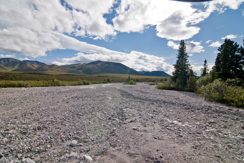Denali Riverbed #1
