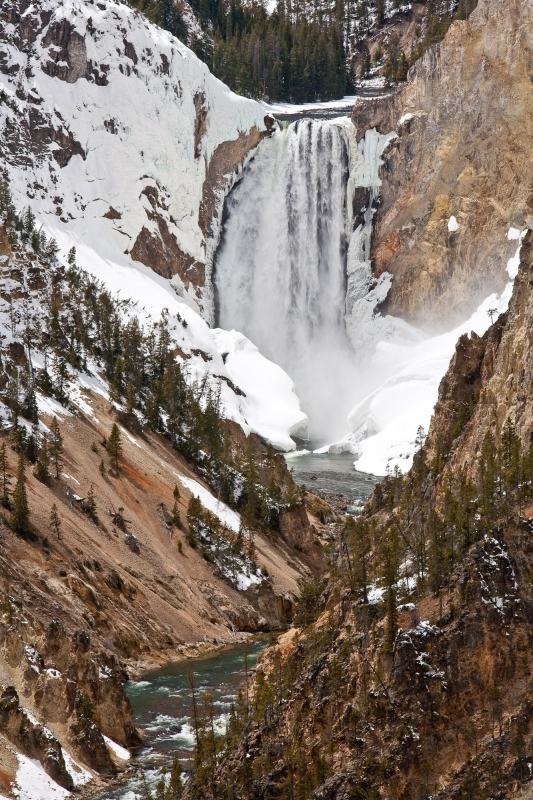 Lower Falls Or The Yellowstone