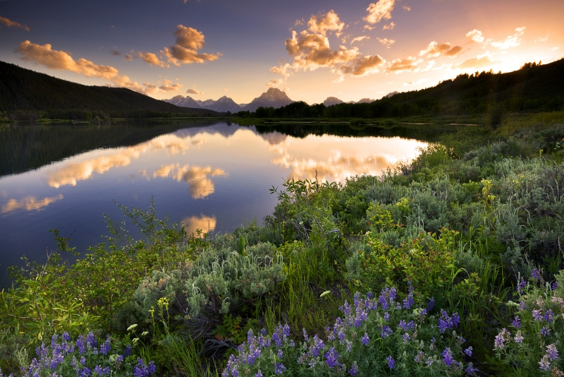 Oxbow Bend Sunset Reflection