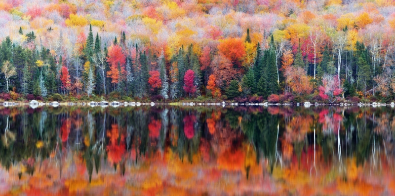 Fall Foliage Reflections At Ricker Pond