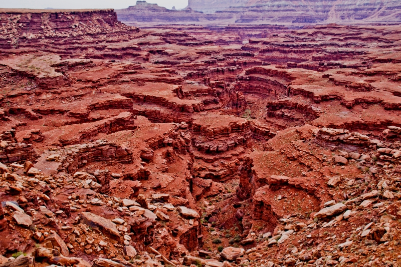 Canyon Craziness – Canyonlands National Park