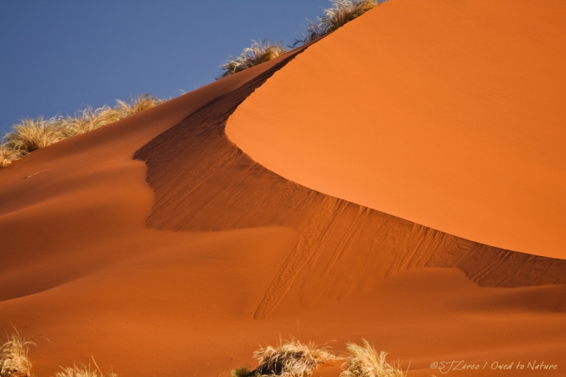 Red Sand Falls As Silk