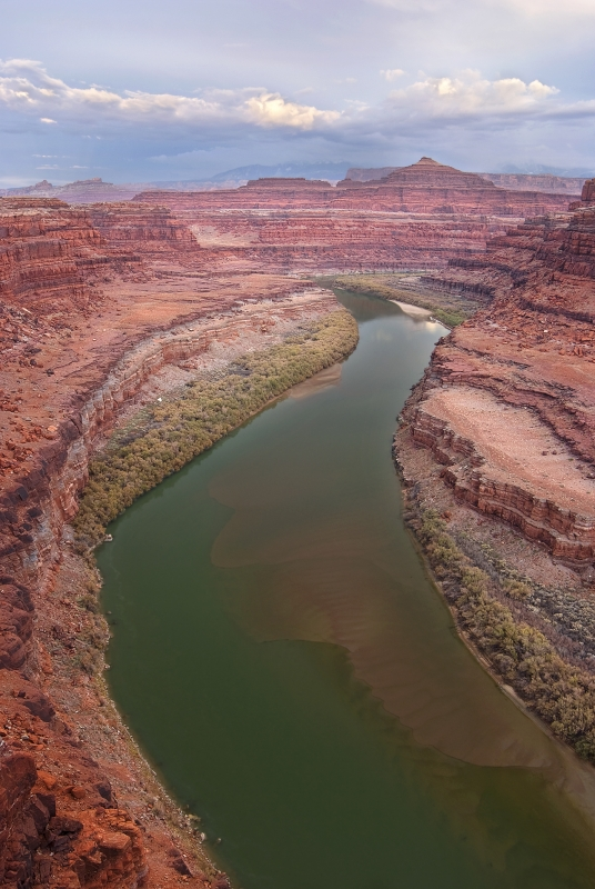 Colorado River From Whit Rim